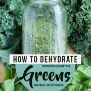Dehydrated green powder in a mason jar on a bed of fresh kale and spinach