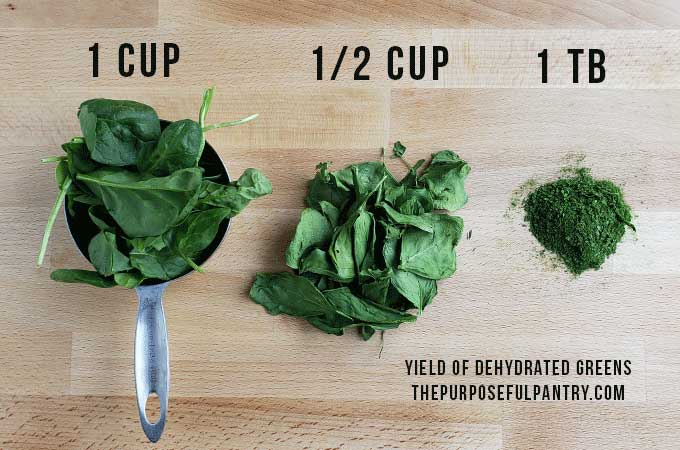 Spinach in transition from fresh to dried to powdered