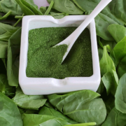 Bed of fresh spinach leaves with a square white dish with spinach powder and white scoop