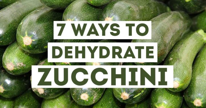 "Stacked zucchini with text overlay ""7 ways to dehydrate zucchini"""