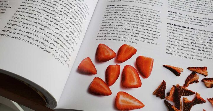 Inside pages of The Beginner's Guide ot Dehydrating