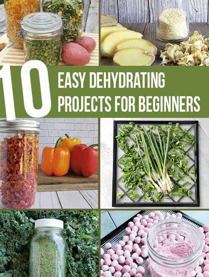 Dehydrated projects from my kitchen