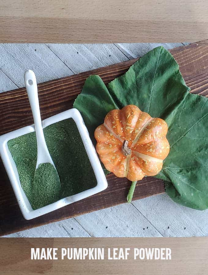 pumpkin leaf with ornamental pumpkin and white dish of pumpkin leaf powder on wooden surfaces