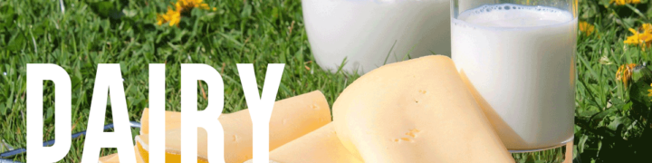 cheese and glasses of milk on a grass field
