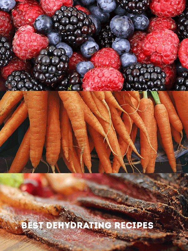 "berries, carrots and jerky displayed with text overlay ""best dehydrating recipes"""