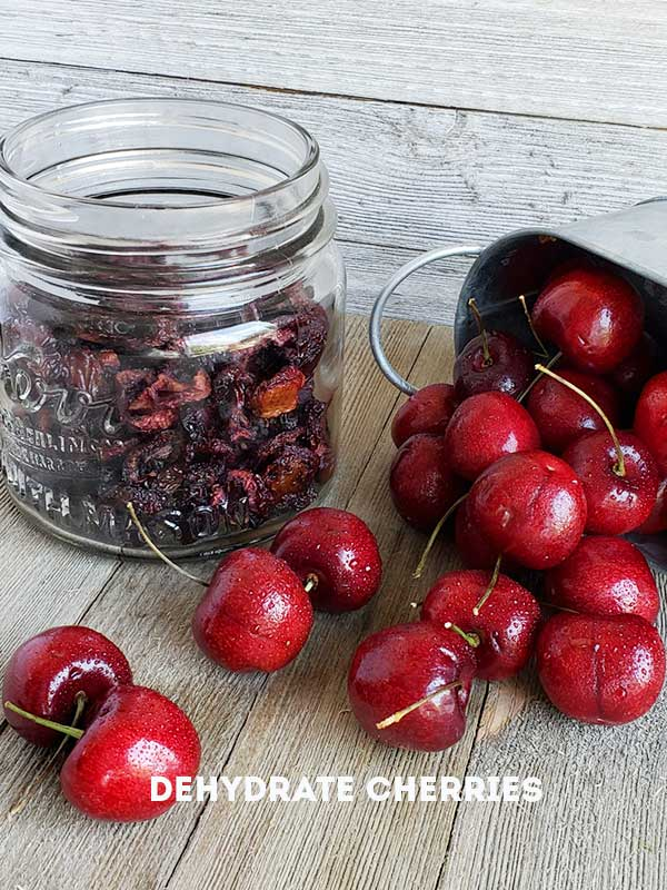 dehydrated cherries in a jar with fresh cherries in a steel serving dish on a wooden surface