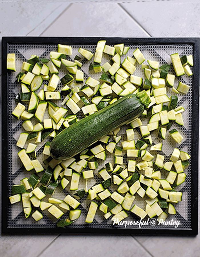 Diced zucchini and a whole zucchini on an Excalibur Dehydrator Tray.