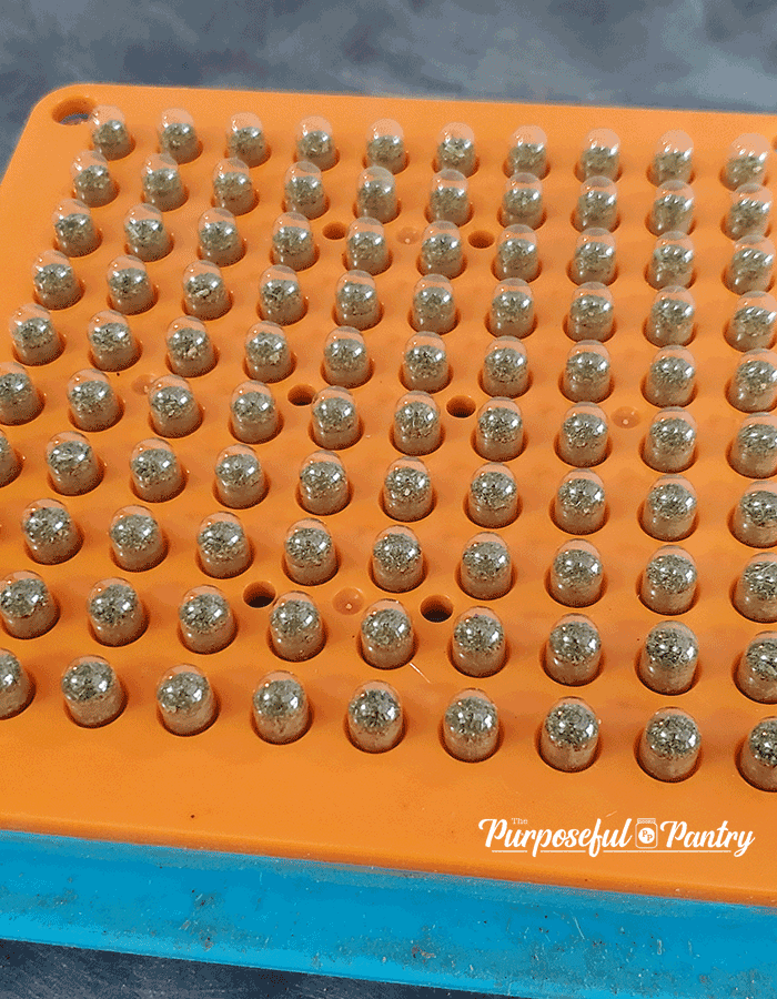 Finished vegetable powder capsules in orange plate