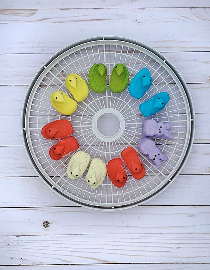 Nesco dehydrator tray with Peeps marshmallows in various colors and flavors