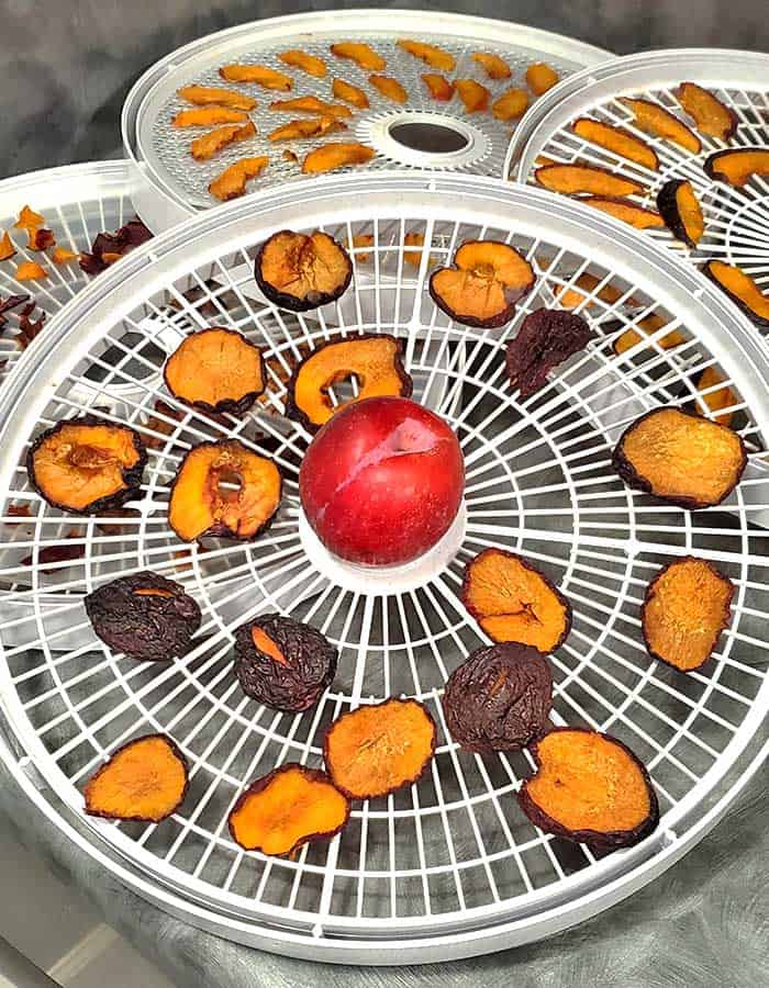 Dehydrator trays with sliced plums, halved plums and a fresh plum - all being dried