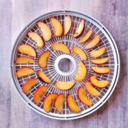 Nesco dehydrator tray full of plum slices to be dried