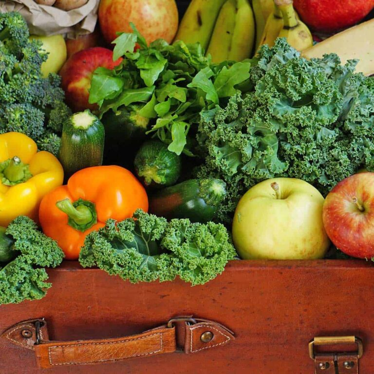 Fruits and vegetables in a suitcase for a post on how to dehydrate produce
