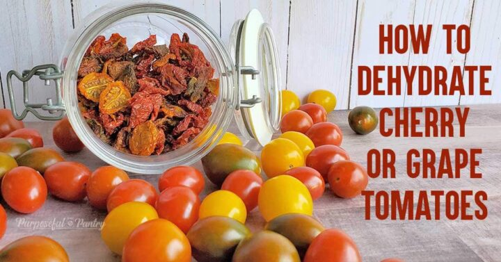 Jar of dried tomatoes spilling onto table top with fresh tomatoes