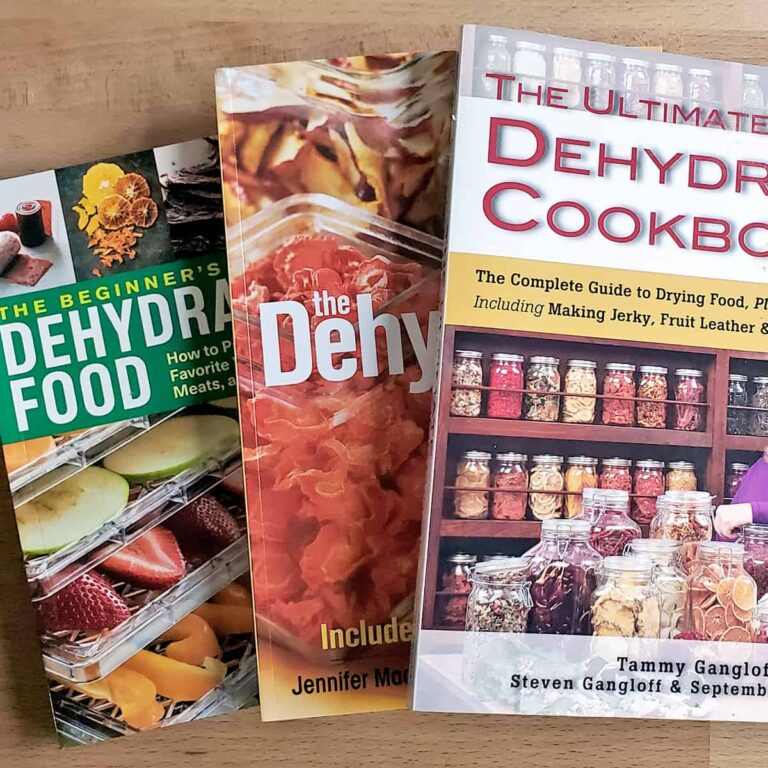 A stack of the best books about dehydrating