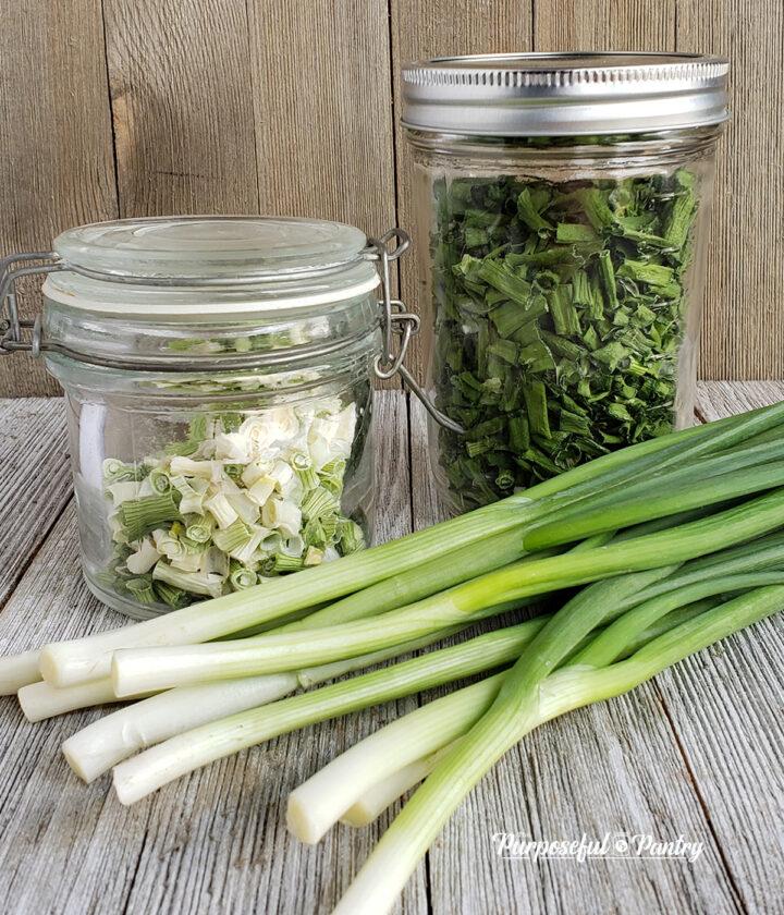 fresh green onions with jars of dehydrated green onions aka scallions