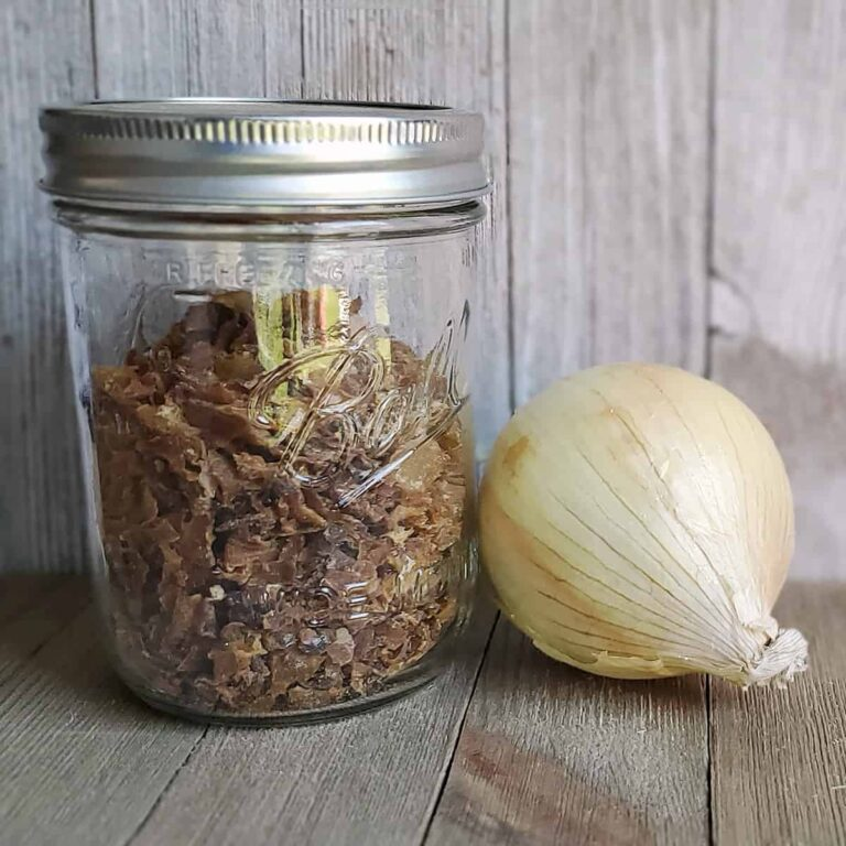 Mason jar of dehydrated caramelized onion with a fresh onion on a wooden surface