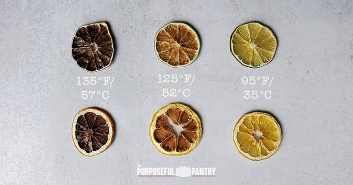 Dehydrated lemons and limes at three different temperatures to show how they brown