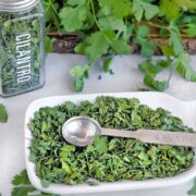 A display of fresh cilantro, dried cilantro in an herb jar, and dried cilantro on a serving dish with a metal measuring spoon.