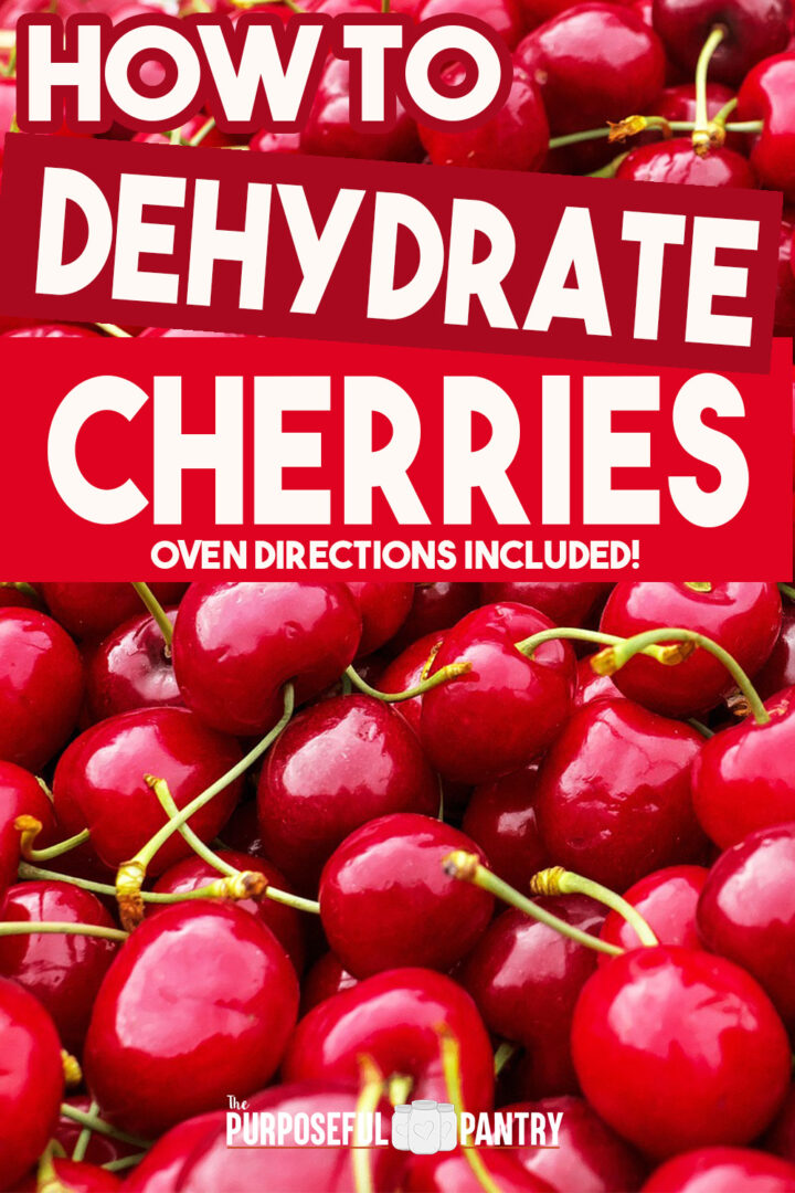 Cherries with stems in a big pile - learn to dehydrate cherries