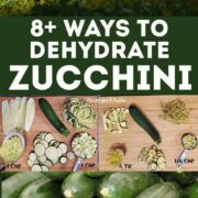 Zucchini and dehydrated zucchini in a montage of images on dehydrating zucchini for Pinterest