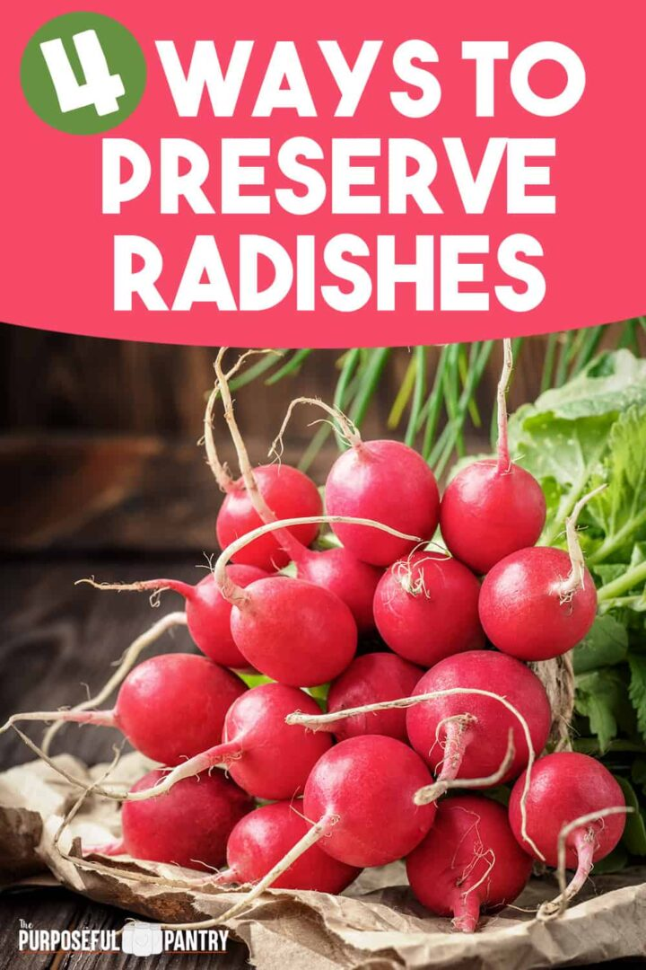 Radish bunch on a table for encouraging preservation
