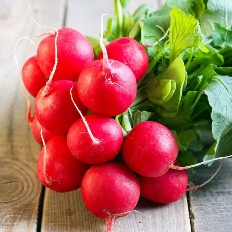 radish bunch on a wooden background