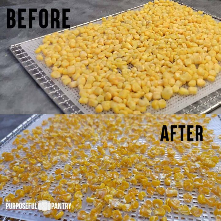 Before and after of Frozen corn dehydrated - on Cosori dehydrator trays.