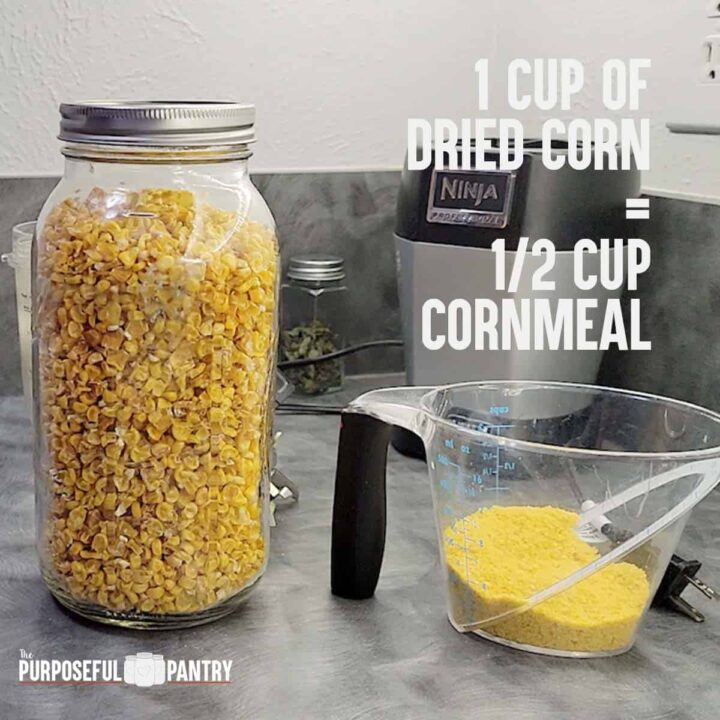 Jar of dried corn and measuring cup of corn meal made from that dehydrated corn