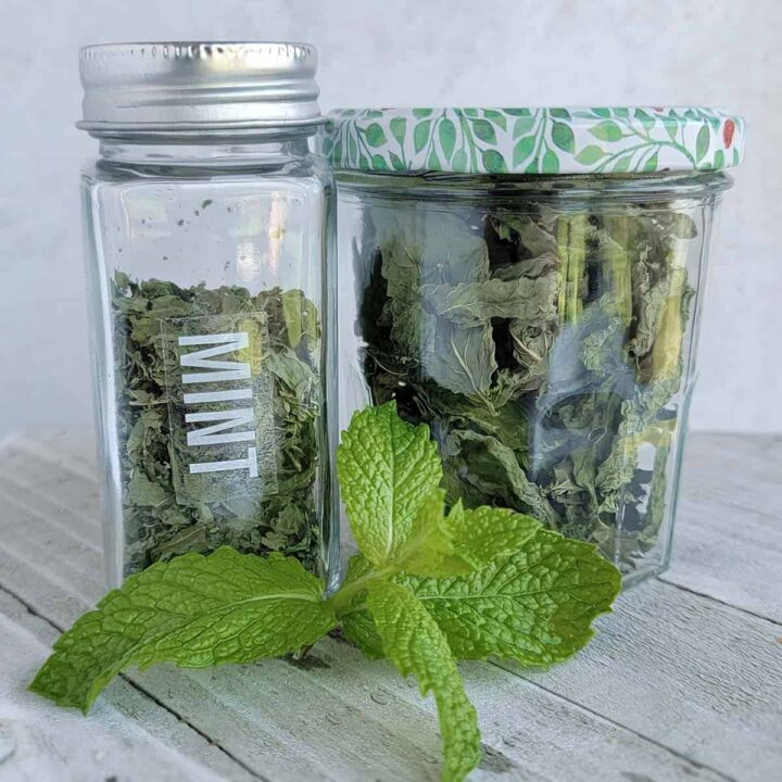 Jar of dried mint, dried mint leaves and fresh mint all on a white cutting surface